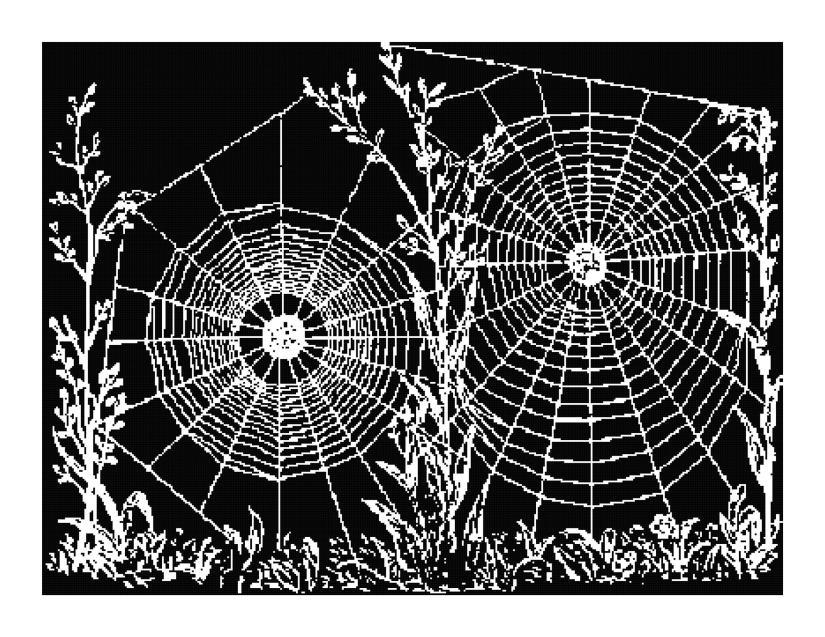 Spiderweb Silhouette Pattern