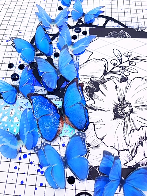 blue butterflies 1