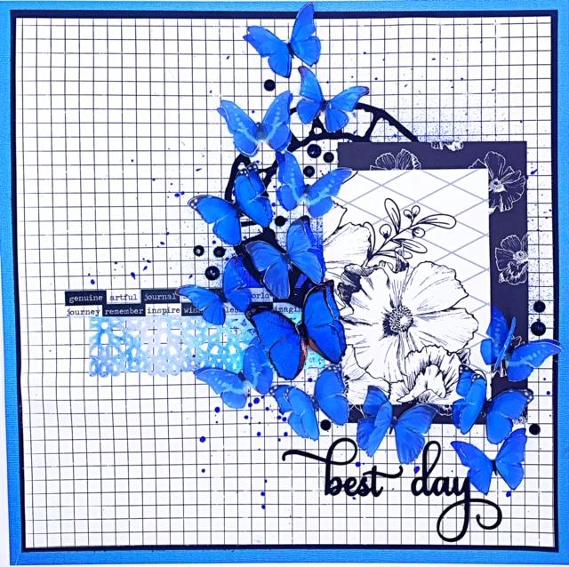 blue butterflies 2